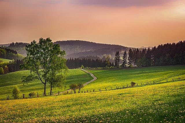 Comprare un terreno: il CDU per l'atto d'acquisto